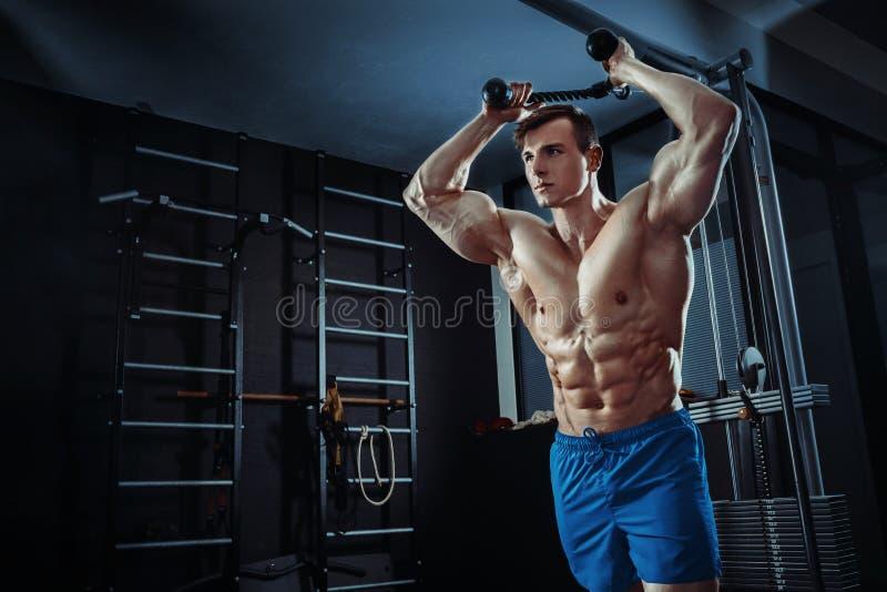 Silny mięśniowy bodybuilder robi ćwiczeniu w gym Część sprawności fizycznej ciało obrazy stock