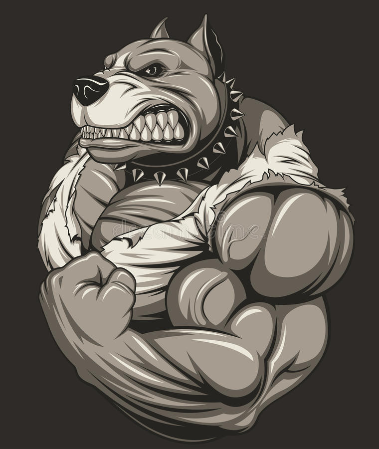 Silny okrutnie pitbull royalty ilustracja