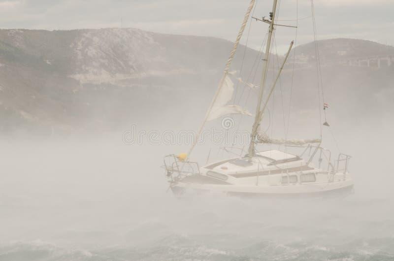 Silny wiatr zdjęcie stock