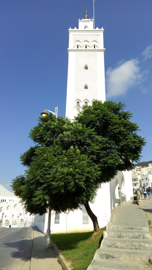Silo di bianco della moschea fotografia stock libera da diritti