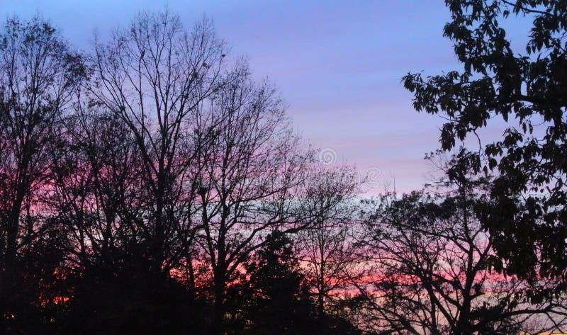Siloet op een zonsondergang royalty-vrije stock foto