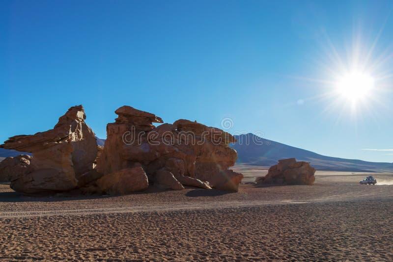 Siloli沙漠的独特的风景有石头的Tree Arbol在岩石谷,玻利维亚的de彼德拉 免版税库存照片