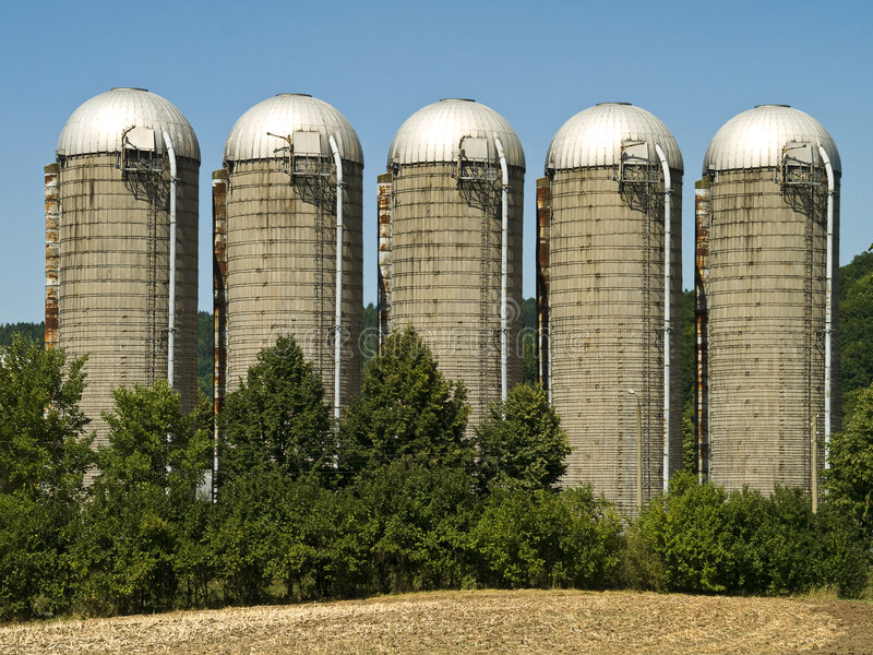 Silos. Five silos at the edge of a field in bright sunlight stock photos