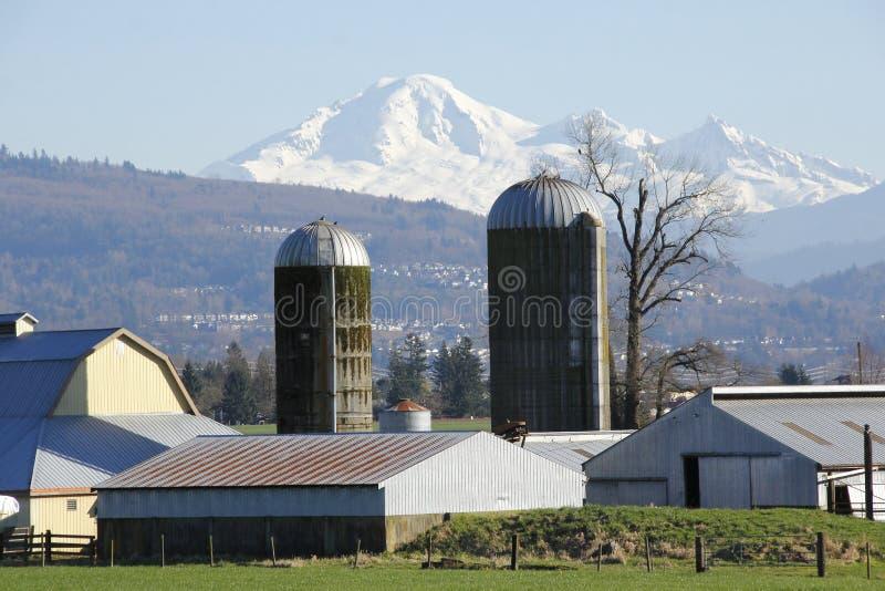 Silos de Baker et de ferme de bâti photos libres de droits