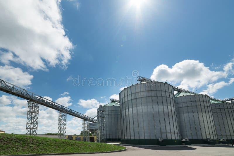 Silos del alto metal para el almacenamiento del trigo y de la cebada Día soleado, el cielo azul foto de archivo