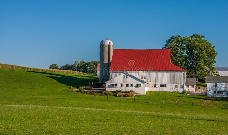 Silos i stajnia z czerwień dachu pobliską zieloną łąką zdjęcie stock