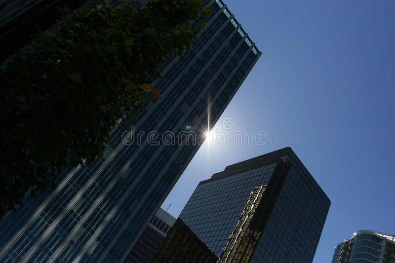 silouette budynku biura obrazy royalty free