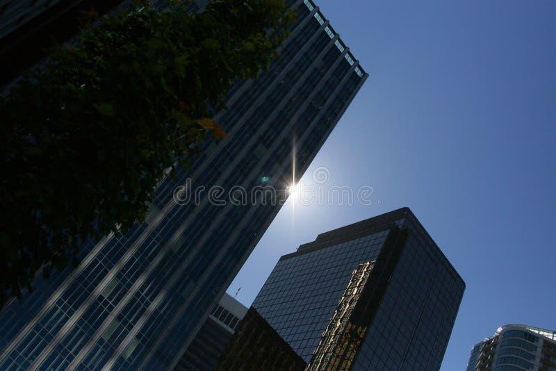 Silouette d'immeuble de bureaux images libres de droits