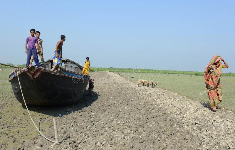 Silted River Of Sundarban royalty free stock photos