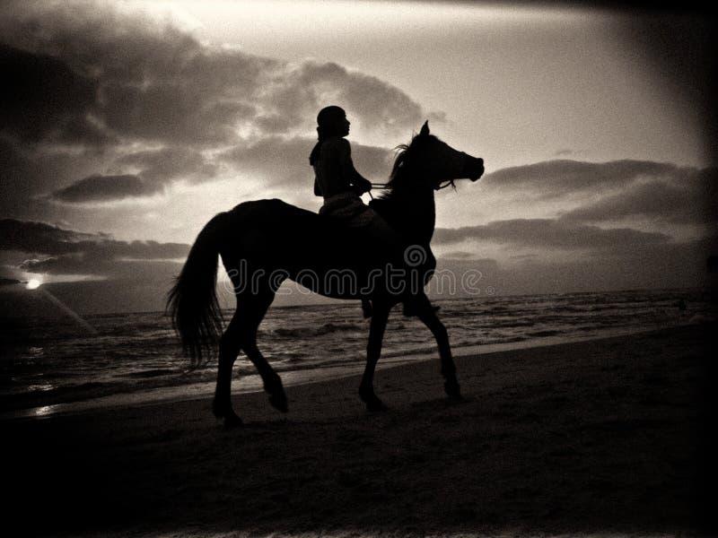 Silueta blanco y negro de un hombre que monta un caballo en una playa arenosa debajo de un cielo nublado durante puesta del sol fotografía de archivo libre de regalías