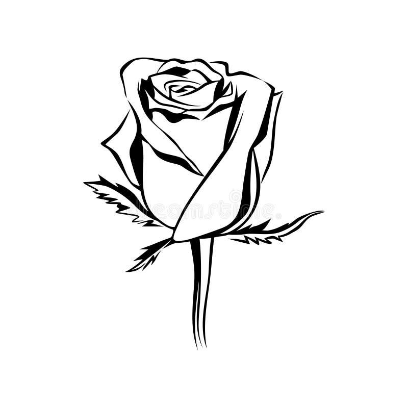 Silueta color de rosa del esquema del brote del vector Logotipo, tatuaje o emblema stock de ilustración