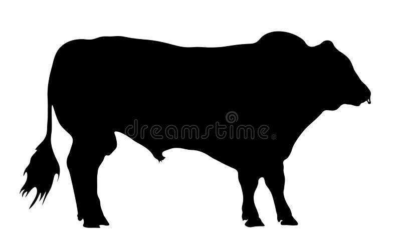 Silueta de Bull foto de archivo