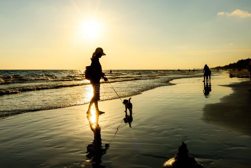 Silueta de la mujer con el perro en la playa fotos de archivo libres de regalías