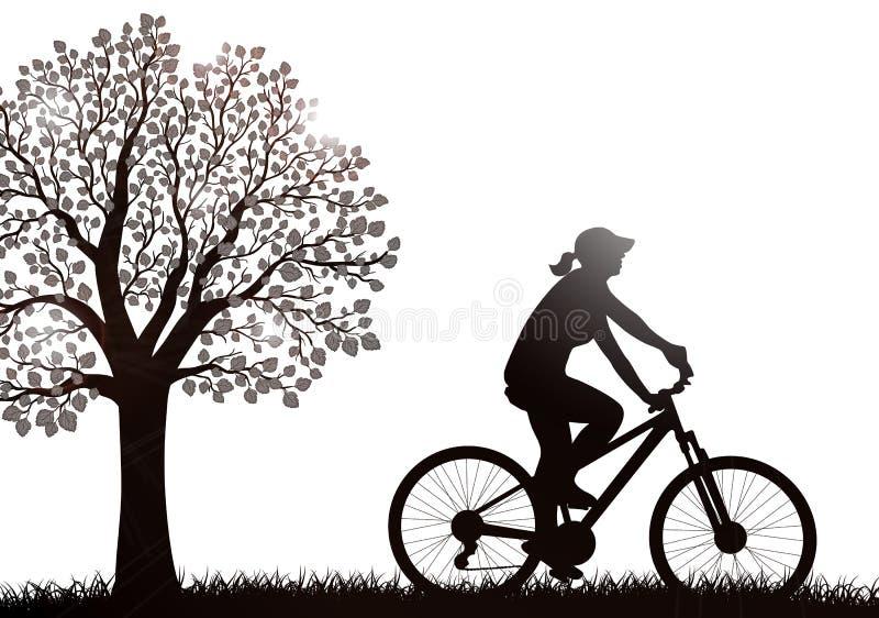 Silueta de la mujer del ciclista al aire libre imágenes de archivo libres de regalías