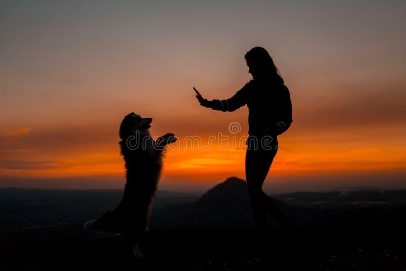 Silueta de la mujer joven con su perro que hace truco en el amanecer con la montaña en fondo imagenes de archivo