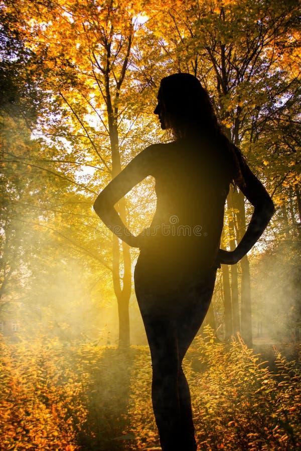Silueta de la mujer sobre fondo del bosque del otoño imagenes de archivo