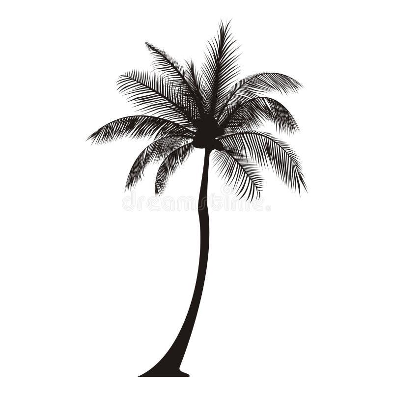 Silueta de la palmera stock de ilustración