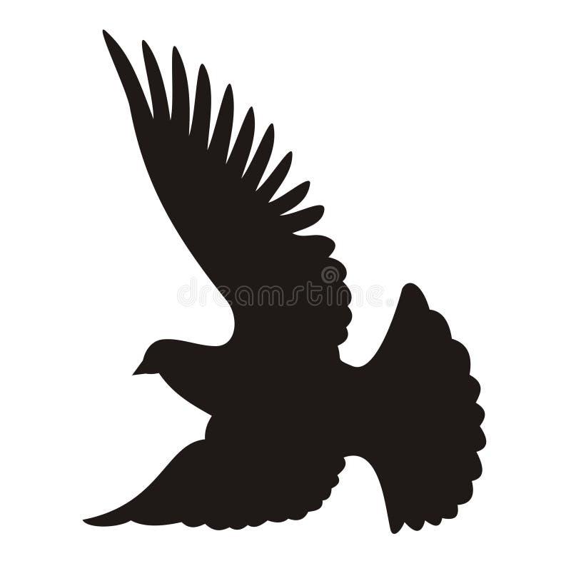 Silueta de la paloma fotos de archivo