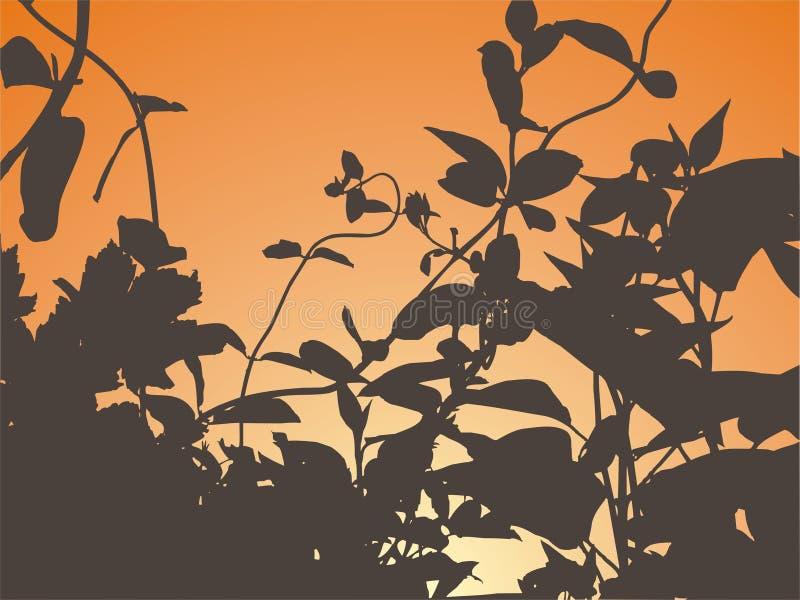 Silueta de la puesta del sol ilustración del vector