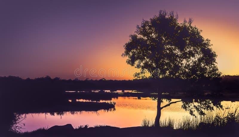 Silueta de la puesta del sol sobre el lago fotografía de archivo libre de regalías