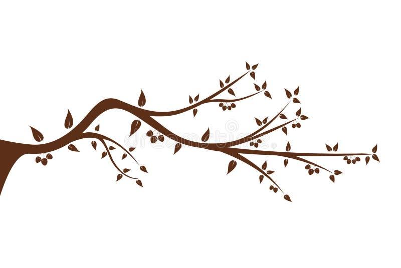 Silueta de la rama de árbol para su decoración ilustración del vector