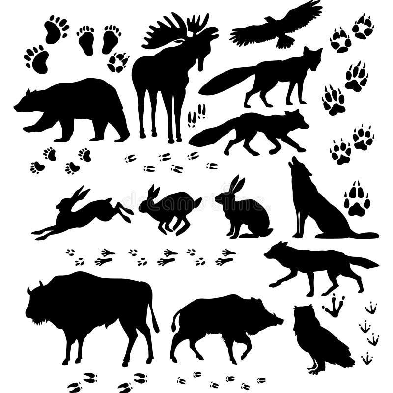 Silueta de los animales salvajes y de los pájaros ilustración del vector