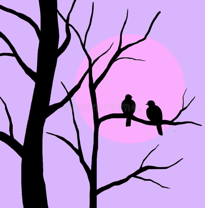 Silueta de los pájaros que se sientan en rama de árbol en la puesta del sol stock de ilustración