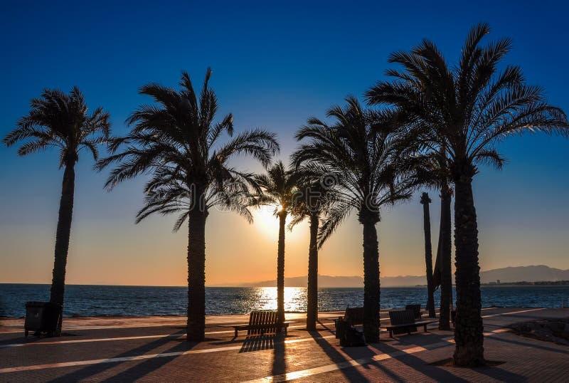 Silueta de palmeras en la puesta del sol Orilla del mar de Salou, España foto de archivo