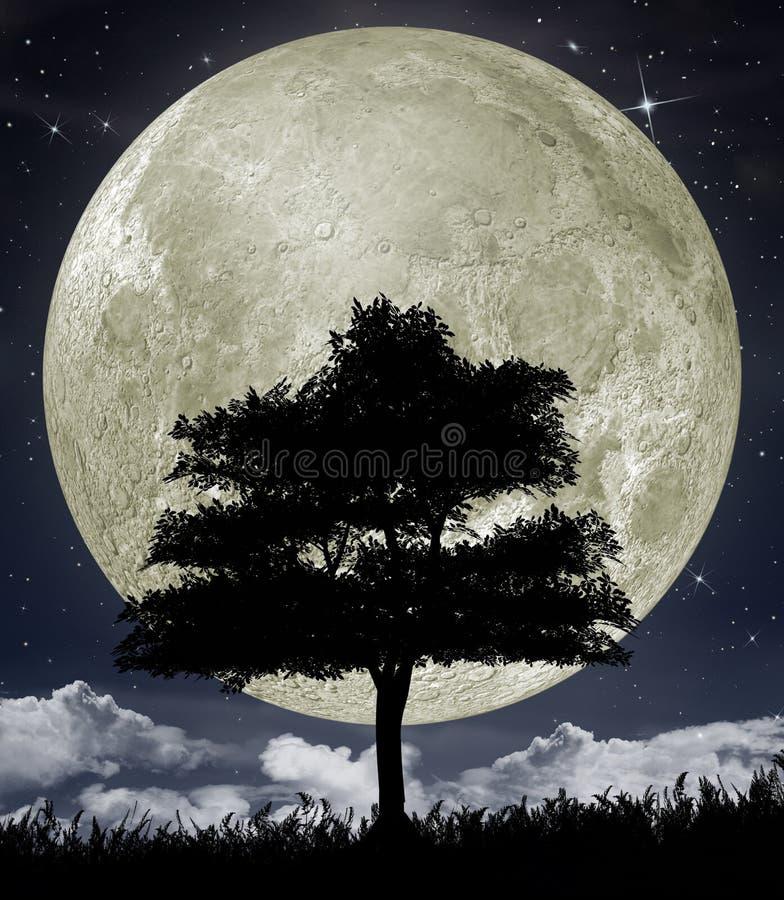 Silueta de un árbol contra la luna grande ilustración del vector