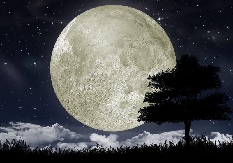 Silueta de un árbol contra la luna grande stock de ilustración