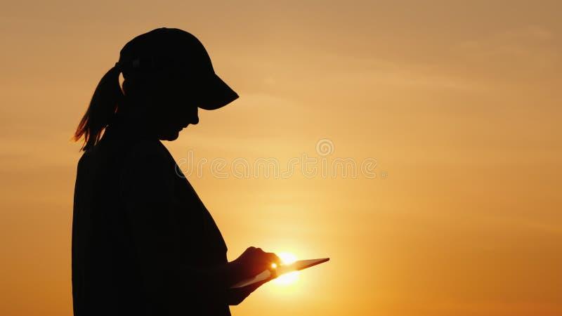 Silueta de un granjero de la mujer que trabaja con una tableta en la puesta del sol imagen de archivo libre de regalías