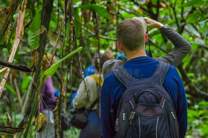 Silueta de un hombre con una capa de lluvia azul profundamente en la selva amazónica, en el parque nacional de Cuyabeno, Suraméri foto de archivo