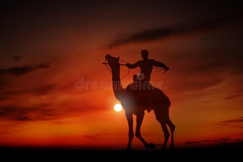Silueta de un hombre joven que monta un camello fotos de archivo libres de regalías