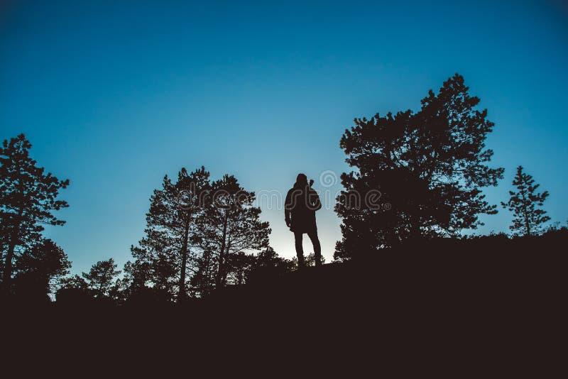 Silueta de un viajero en el medio de un bosque con una mochila y una guitarra contra un fondo del cielo azul foto de archivo