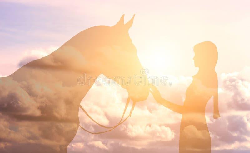 Silueta de una muchacha y de un caballo en un fondo del cielo foto de archivo