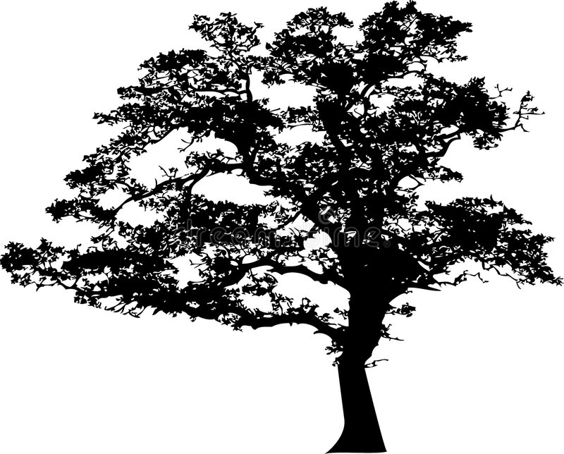 Silueta del árbol libre illustration