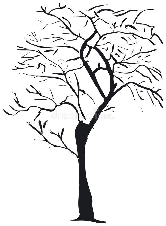 Download Silueta del árbol ilustración del vector. Ilustración de nevoso - 992638