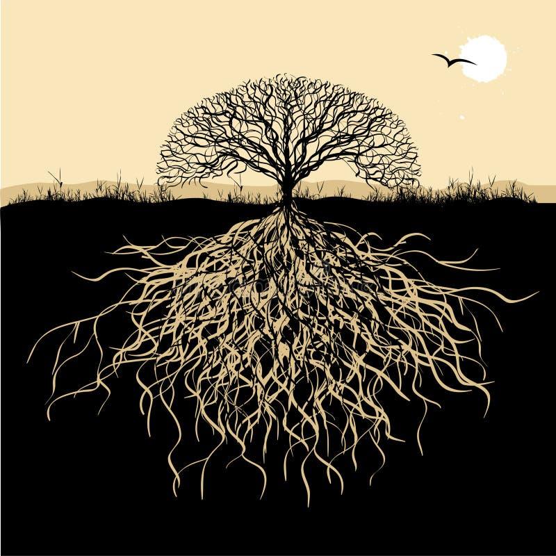 Silueta del árbol con las raíces ilustración del vector