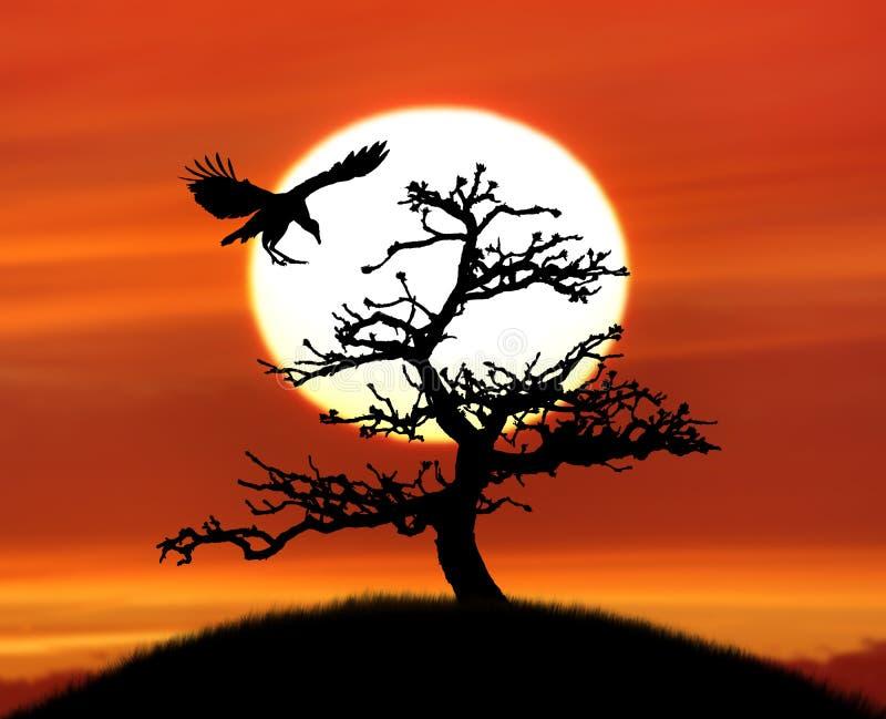 Silueta del árbol y un pájaro contra puesta del sol fotos de archivo