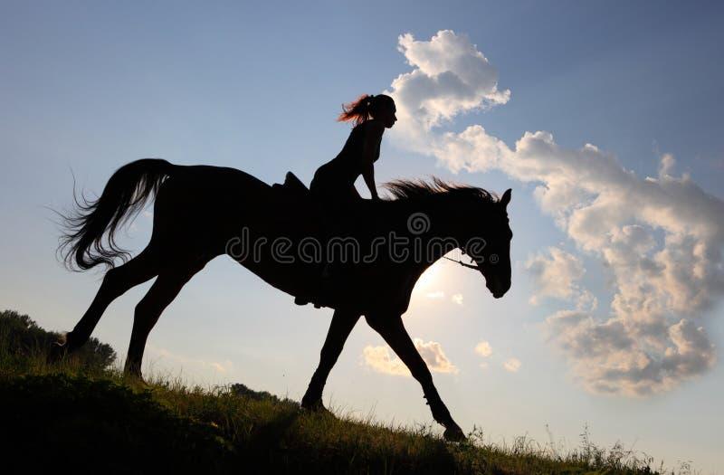 Silueta del caballo de montar a caballo de la vaquera a través de la pradera de la oscuridad fotografía de archivo libre de regalías