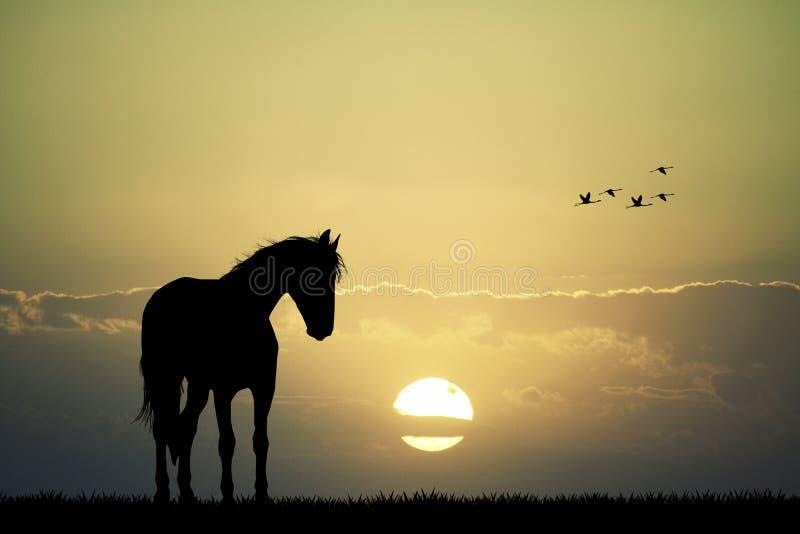 Silueta del caballo en la puesta del sol stock de ilustración