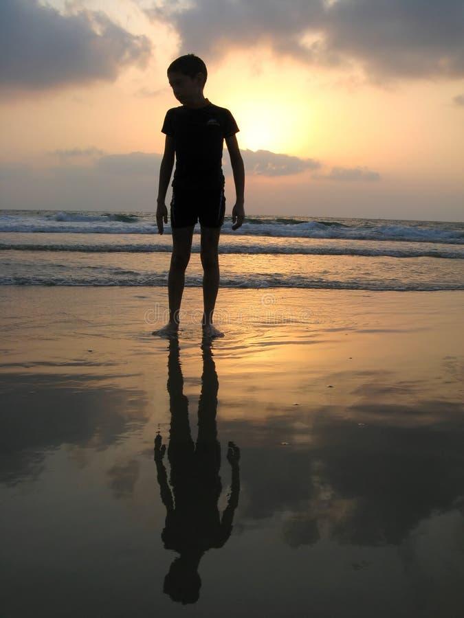 Silueta del cabrito en la playa imágenes de archivo libres de regalías