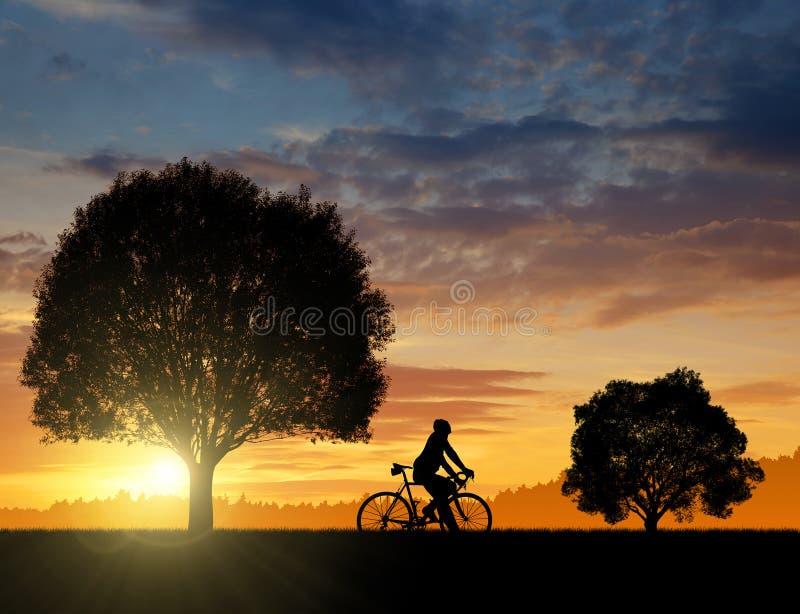 Silueta del ciclista imágenes de archivo libres de regalías