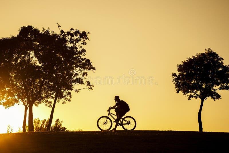 Silueta del ciclista que se sienta en su bici en la puesta del sol fotografía de archivo