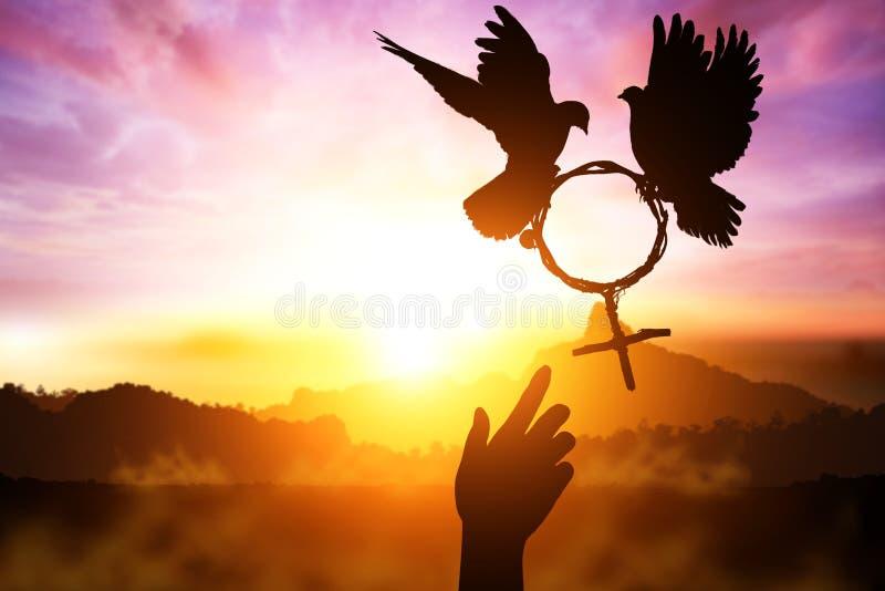 Silueta del deseo de dos manos amigas a la paloma dos que lleva a cabo la rama en el vuelo de la forma del símbolo de Venus en el fotografía de archivo libre de regalías