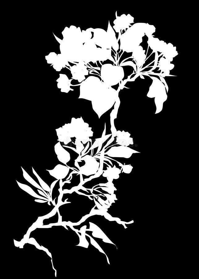 Silueta del flor de cereza ilustración del vector