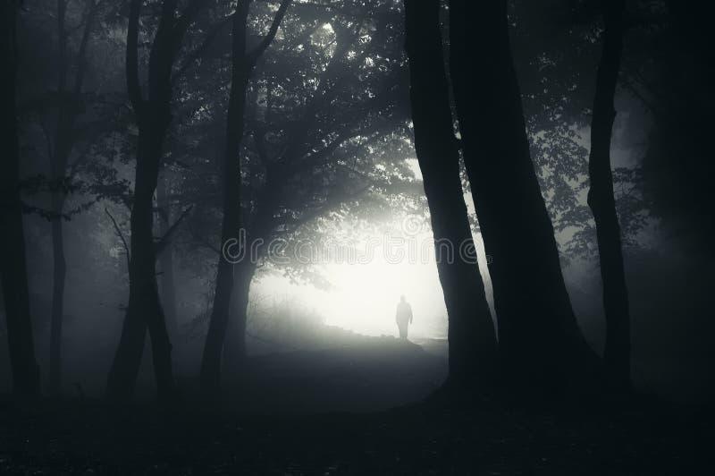 Silueta Del Hombre En Bosque Misterioso Con Niebla Imagen De Archivo Imagen De Horror Pesadilla 45563549