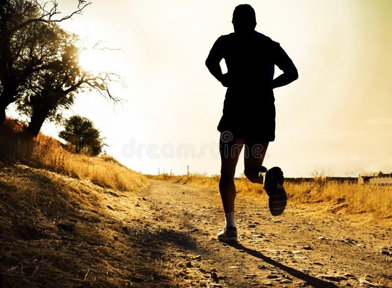 Silueta del hombre joven del deporte que corre en campo en entrenamiento del campo a través en la puesta del sol del verano fotos de archivo libres de regalías