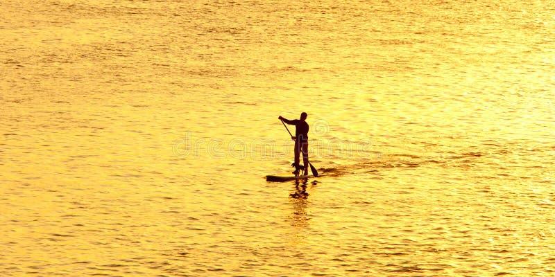 Silueta del hombre paddleboarding imagen de archivo libre de regalías