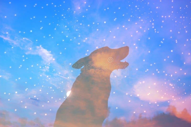 Silueta del lobo del grito imágenes de archivo libres de regalías